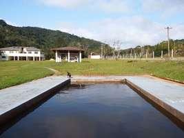 Sitio em Miracatu com 10 alqueires | À Venda