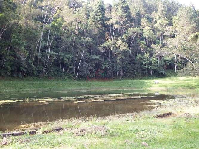 Vista para lago