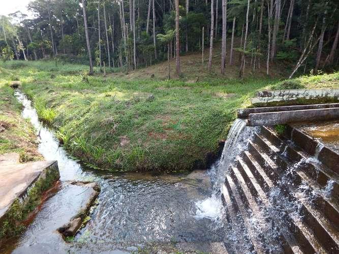 Queda d' água com riacho