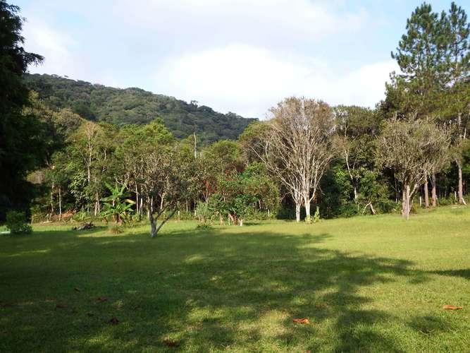 Área semi plana gramado