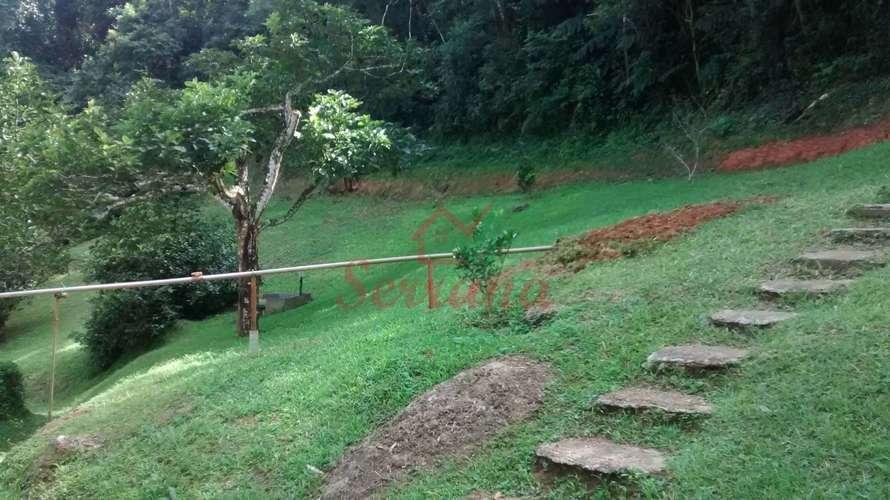 Escada de acesso para pomar