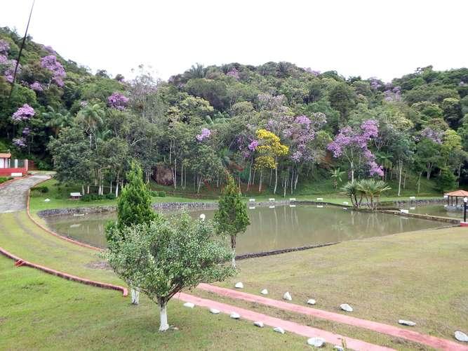 Vista do alto para lago