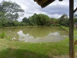 Fazenda 188 hectares em Jequitibá MG
