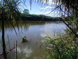 Terreno 60 Hectares a Venda em Jequitibá MG