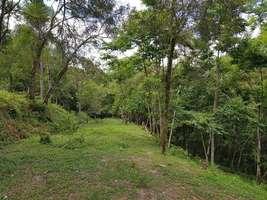 Terreno em Campo Largo - Itaqui de Cima - 2.500 m²