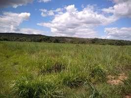 Terreno 10 hectares a venda com excelente preço em Jequitiba MG
