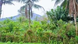 VENDO Terreno em Camorim